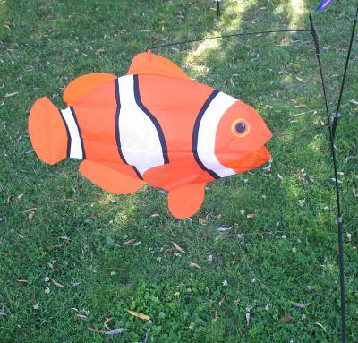 Manche air poisson clown 431810 10 for Poisson clown prix